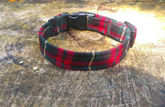 Dog collar Red/green