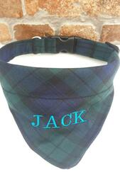 Dog Collar with Bandana Blue/green